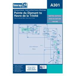 ICA301.jpg
